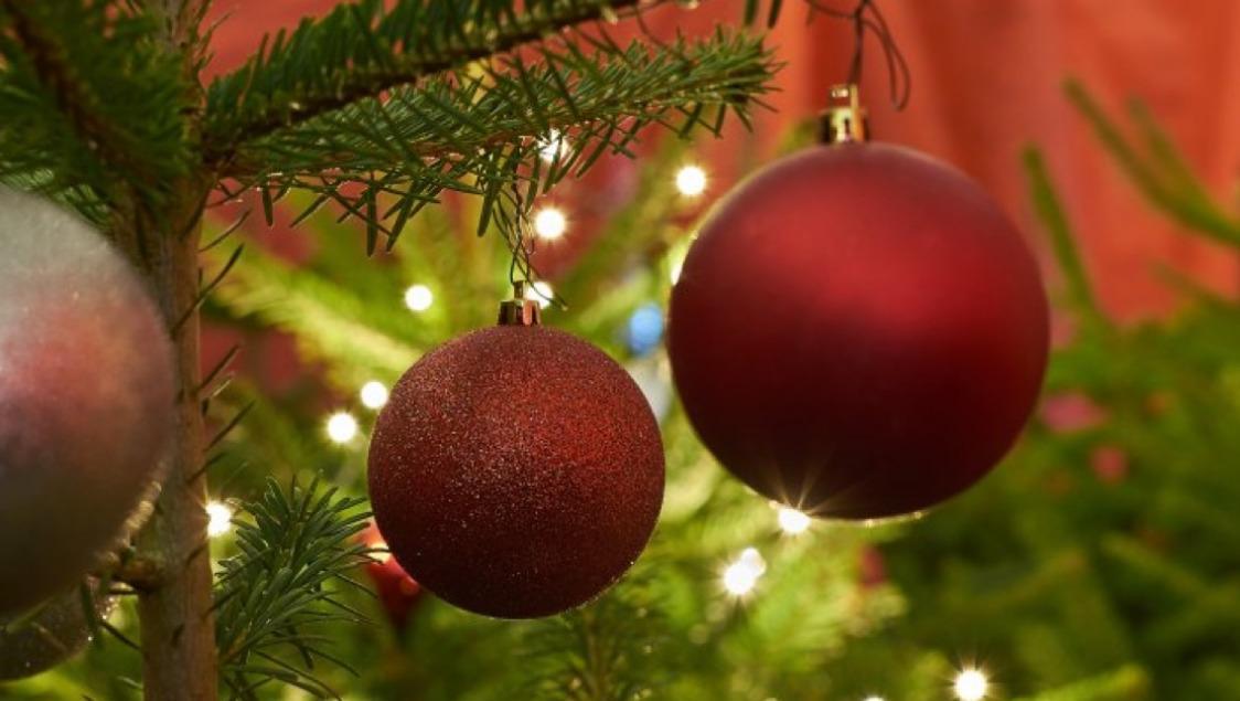 Weihnachsbaumverkauf
